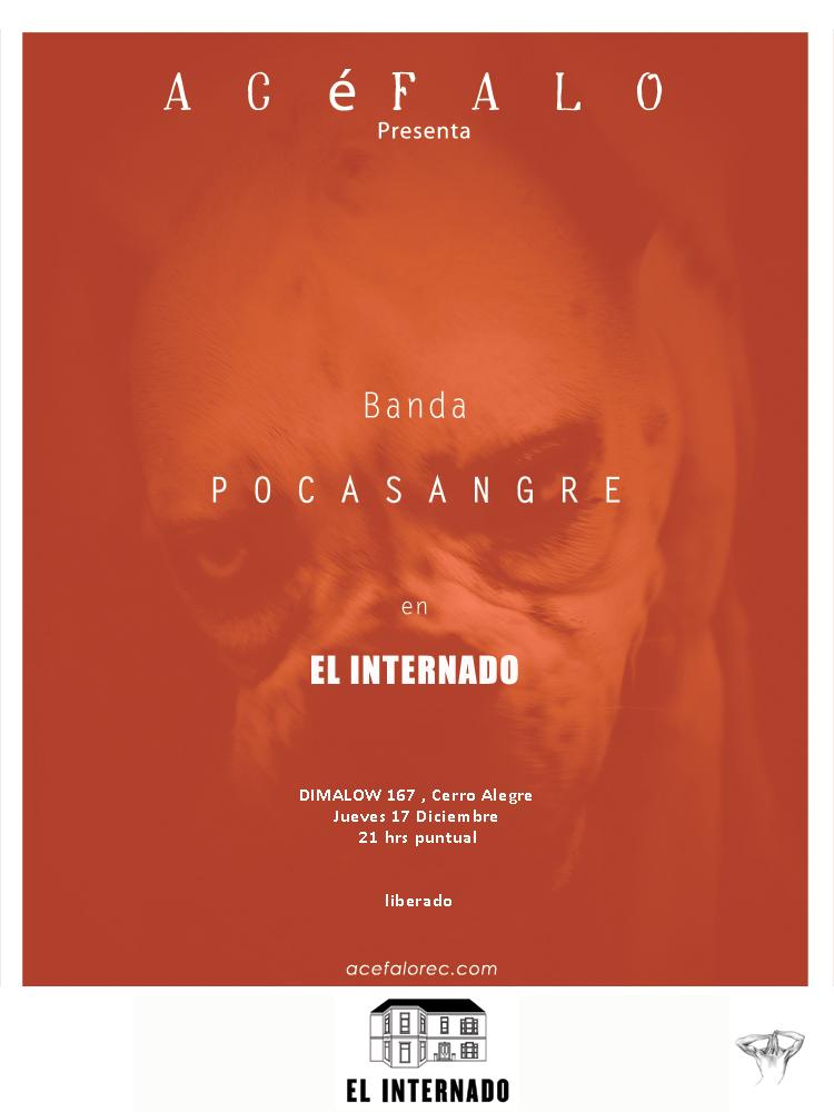 VOLADOR_17DIC_2015_EL-INTERNADO